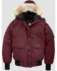 Canada Goose Chilliwack Bomber - Red