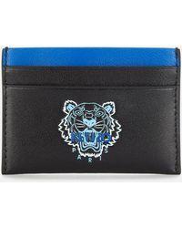 KENZO Ekusson Card Holder - Blue