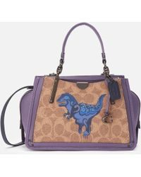 COACH Coated Canvas Signature Rexy By Zhu Jingyi Dreamer 21 Bag - Multicolor
