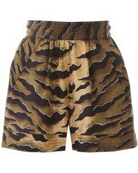 DSquared² Tiger Shorts - Multicolor