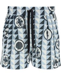 Dolce & Gabbana - Majolica Print JOGGING Shorts 46 Cotton - Lyst