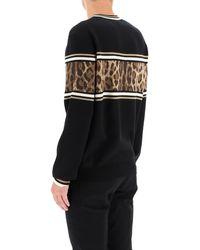 Dolce & Gabbana Animalier Wool Jumper 46 Wool - Black