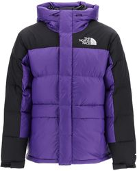 The North Face PIUMINO HIMALAYAN - Viola