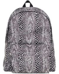 Celine Medium Backpack In Nylon With Python Printed - Multicolour