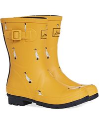 Joules Molly Welly Gummistiefel - Gelb