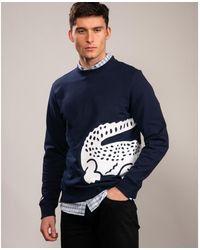 Lacoste Sh5177-00 Sweatshirt - Blue
