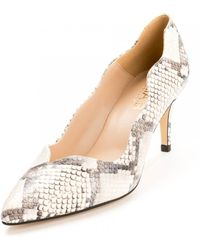 Elia B Dakota Heeled Shoe - Multicolour