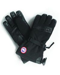 Canada Goose Northern Glove - Black