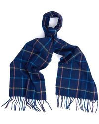 Barbour Tattersall Lambswool Scarf - Blue