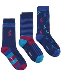 Joules Striking 3 Pack Mens Cotton 3 Pack Sock S/s - Blue