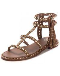 Ash Power Softbrasil Studded Sandals - Brown