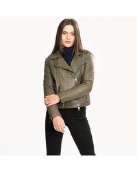 BOSS Jadid Regular Fit Womens Biker Jacket - Brown