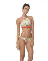 Malai Swimwear | Sylvan Cockatoo High Neck Top T | Lyst