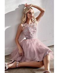 Cinderella Divine - Cd20 Glitter Floral Tulle Cocktail Dress - Lyst