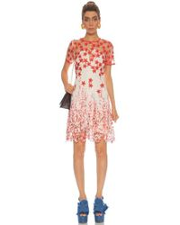Elie Tahari E40a9607 Floral Embroidered Illusion Jewel A-line Dress - Pink