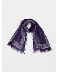 Kapital Rayon Dragonfly Bandana Stole - Purple