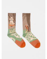 Bonne Maison Caniche Iris Fane Socks - Multicolor