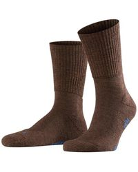 Falke Walkie Light Socks Brown