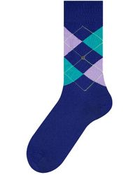Burlington King Socks Blue/purple
