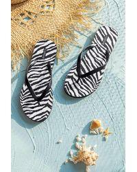 CUPSHE Safari Zebra Striped Flip Flops - Black