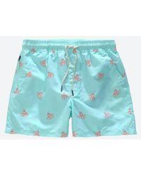 Oas Orange Octopus Swim Shorts - Blue
