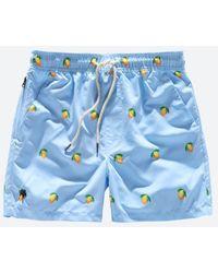 Oas Blue Lemon Swim Trunk