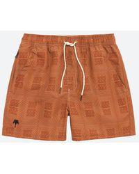 Oas Reddy Swim Shorts