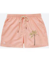 Oas Embroidered Palm Peach Swim Trunks - Multicolour