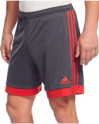 Adidas Tastigo 15 Climacool Performance Shorts gray - Lyst