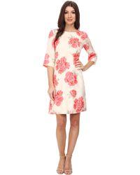 Pendleton Amy Print Dress - Lyst
