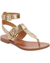 Belle By Sigerson Morrison Reily Thong Sandals - Metallic