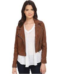 Blank Rocky Rode Jacket - Brown