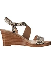 Cole Haan Ravenna Wedge - Lyst