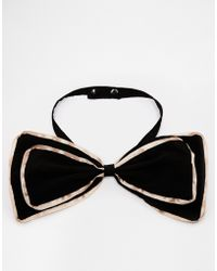 Asos Bow Tie with Contrast Edge - Lyst