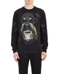 Givenchy Rottweiler Sweatshirt - Lyst
