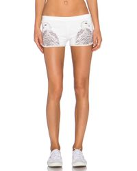All Things Fabulous - Track Shorts - Lyst