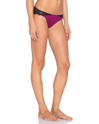Love Haus by Beach Bunny - Barely There Lace Cheeky - Lyst