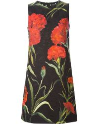 Dolce & Gabbana Carnations Print Appliqué Dress - Lyst