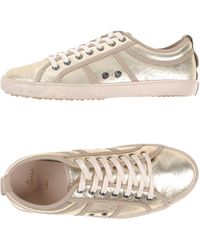 Plims By N.d.c. - Low-tops & Trainers - Lyst