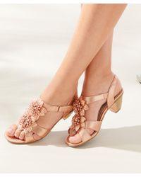 DAMART Elegant Floral Trim Velcro Sandals - Multicolour