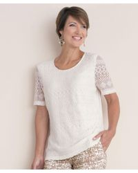 38f6d9f5a2417 Dorothy Perkins Lace Neck Trim T Shirt in White - Lyst