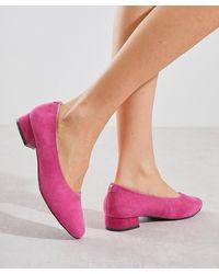 DAMART Court Shoe - Multicolour