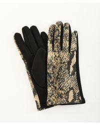 DAMART Printed Gloves - Gray