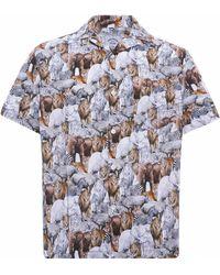 Portuguese Flannel Savanah Shirt - Multi - Multicolour