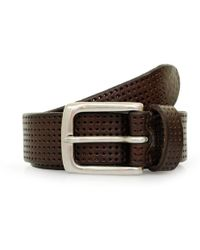 Andersons - Anderson'S Perforated Brown Leather Belt Af3392 Pl100 M1 - Lyst