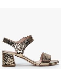 Daniel Petro Gold Metallic Leather Reptile Block Heel Sandals