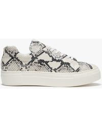 Daniel - Geneve Reptile Leather Flatform Trainers - Lyst
