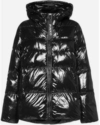Pinko Eleodoro Quilted Nylon Down Jacket - Black