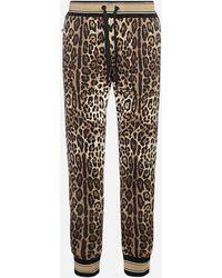 Dolce & Gabbana Leopard Print Cotton sweatpants - Multicolor