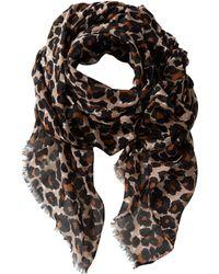 San Diego Hat Company Bss1411 Leopard Print Fabric Scarf - Lyst